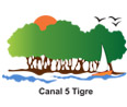 canal-5-tigre-tv-en-vivo